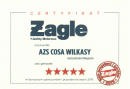 certyfikat żagle 2019